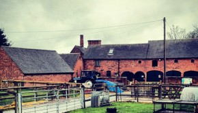 northycote_farm